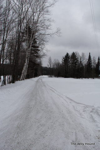 Vermont Winter 2013 007