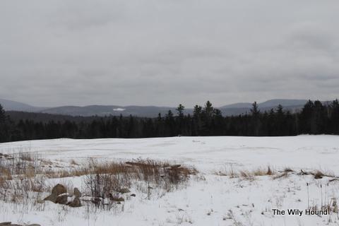 Vermont Winter 2013 038