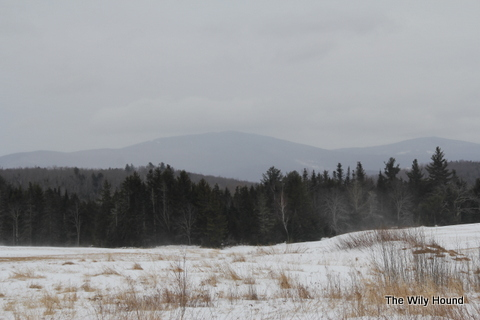 Vermont Winter 2013 040-001