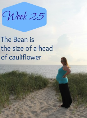 week 25